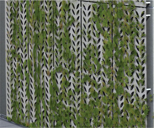 grilaj metalic vertical fixat de perete care sustine frunzele jardinierei